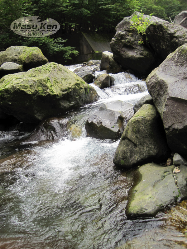 1609143大谷川上流部