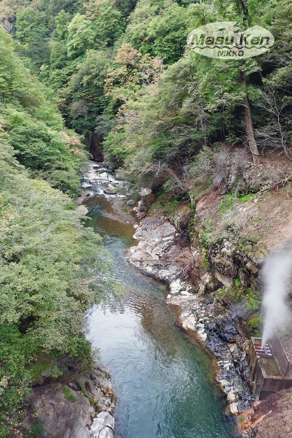 1610081a間欠泉・・川俣温泉