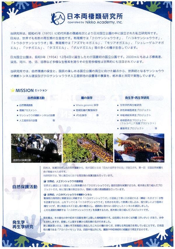 日本両棲類研究所のパンフレット裏面
