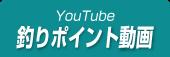 大谷川ポイント動画